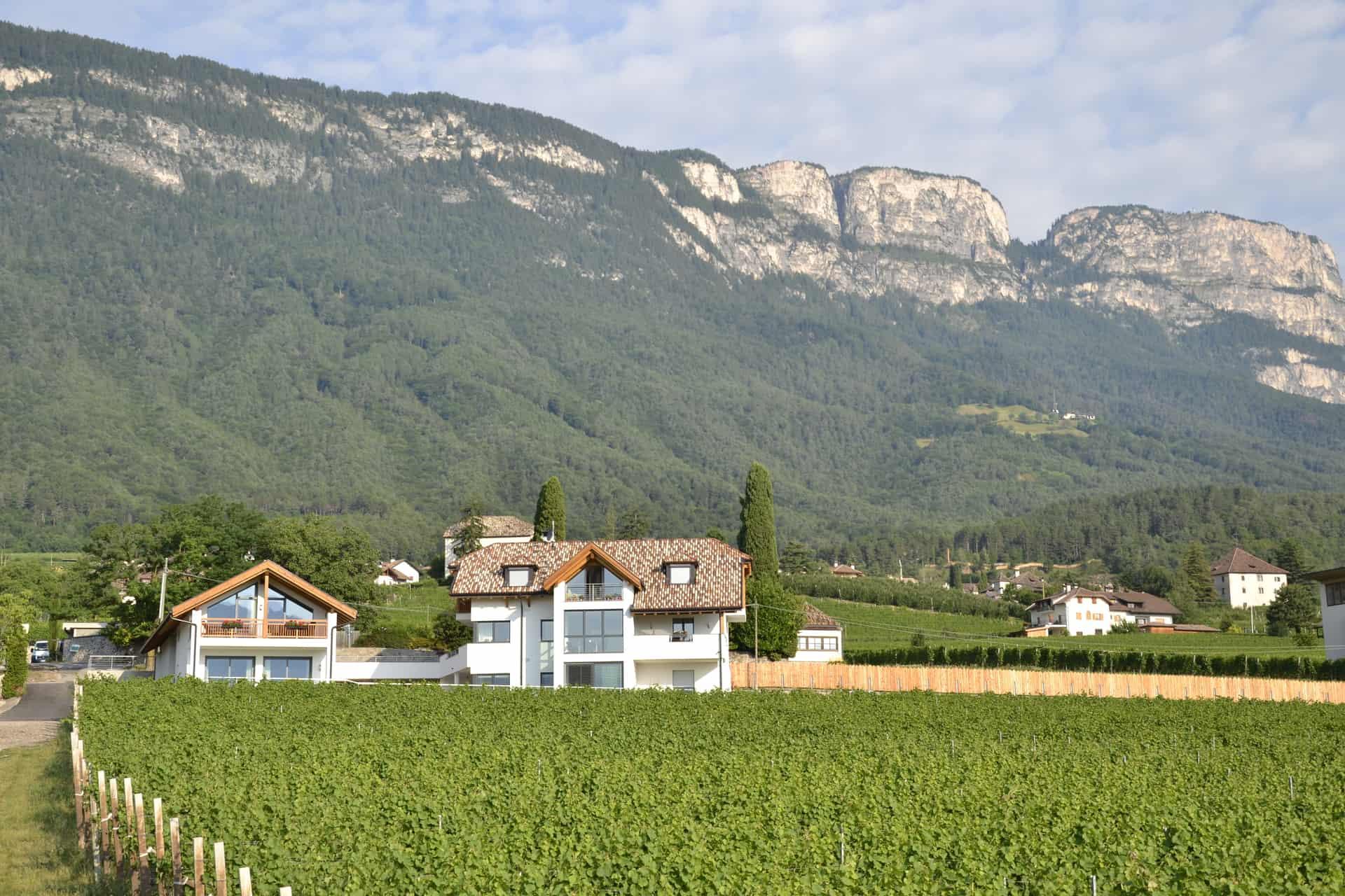 Ferien in den Bergen in Südtirol direkt am Weinberg